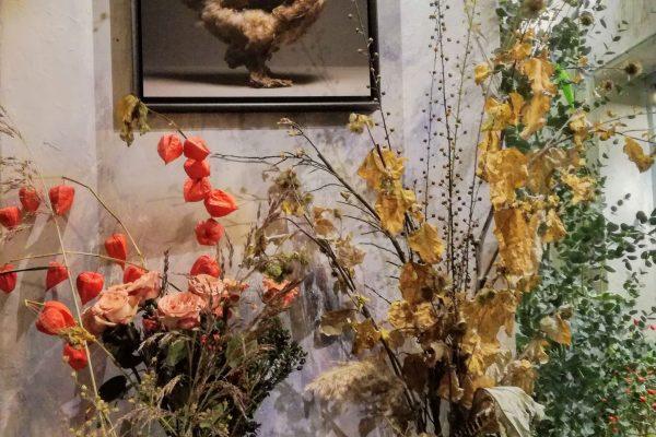 chicken_mostra-fiori-quadri-4