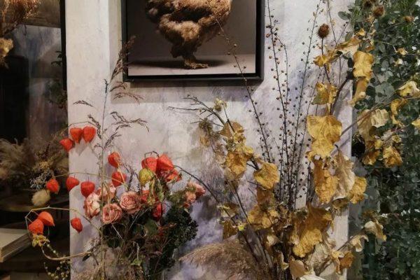Fotografia di gallina ambientata all'interno del negozio Fioraio Bollettini
