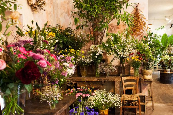 Pienta e fiori nel negozio storico di fiori Bollettini in Via Giambellino a Milano