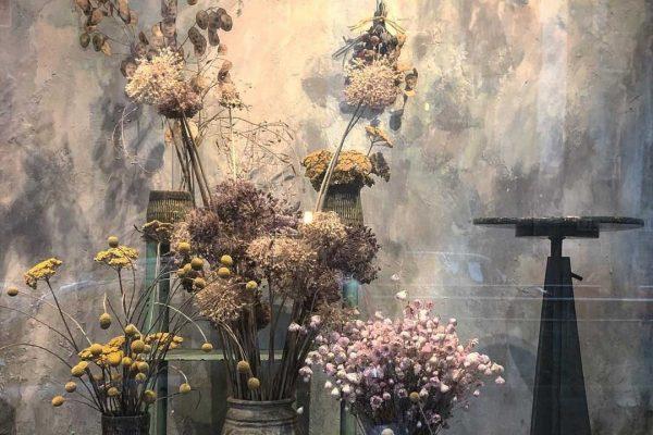 vetrina del fioriaio Bollettini, allestimento con fiori secchi